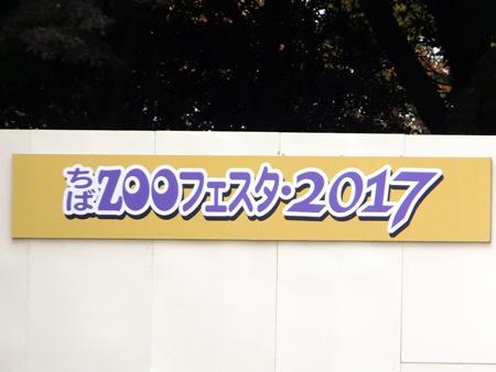 Chibazoo1